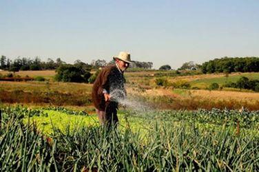 Bolsa Verde beneficia produtor do Projeto Ja�ba